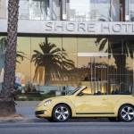 VW Beetle 17